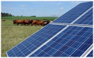 50-kW-Solar-Installation-Bardwell-Kentucky-300x186